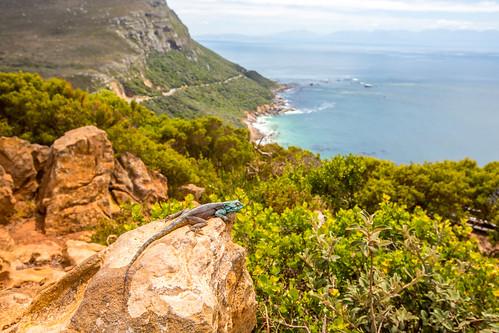 Kaapstad_BasvanOort-114