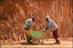 Workers.  Munnar (Claire Pismont) Tags: asie asia inde india indedusud indian worker travel travelphotography viajar voyage clairepismont pismont colorful couleur color colour