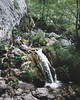Zompo (jacopodemarco) Tags: nature view landscape landscapehunter landscapephotography water waterfall trees wood forest leaves mountain wild wildlife camp camplife campvibes hike hiking explore exploreheaven discover livefolk liveauthentic artcollective artofvisuals green lake riserva zompoloschioppo abruzzo