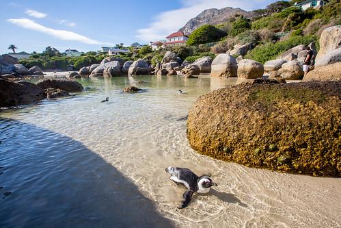 Kaapstad_BasvanOort-104
