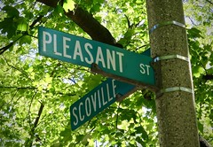 Pleasant (Crawford Brian) Tags: pleasant scoville streetname street avenue oakpark illinois midwest usa sign green tree leaves dappled light shade