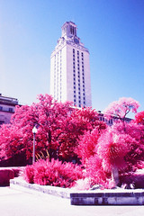 Tower Garden (infobong) Tags: austin utexas infrared infraredfilm colorinfrared colorinfraredfilm
