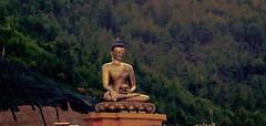 WJ9A8618 (Tarun Chopra) Tags: bhutan