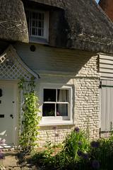 The cottage next door (Jean Latteur) Tags: cottage northbourne kent d3300 nikon 18105 thatch village rural sunlight
