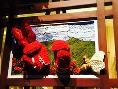 Muhammad Ali Flower Tribute (rudyg39) Tags: thestrip muhammadali conservatory hotel nevada vacation bellagio lasvegas