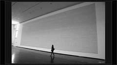 Beaucoup de mots.... mais aussi de la solitude (mamasuco) Tags: nikon d7000 exposition vitry macval noiretblanc