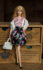 Barbie birthday wishes 2012 (viktoshe4ka) Tags: barbie barbiedoll birthday wishes mackie barbiecollector