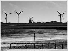 Either Way. It still remains - Wind- Energy! (E-M1.de) Tags: buhne nordfriesland pellworm poller schleswigholstein watt windmühle windrad