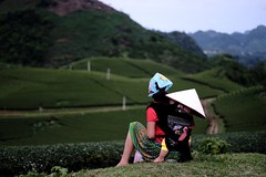 Green Tea dipped Threaded Dreams (thirdworldsong) Tags: 2017 colorsoflife unedited nofilter candid native locals grass leaves light photograph color day sky life baby woman person people streetlightdreams beautiful photography travel adventure southeastasia 50mm fujifilm distance green nature countryside horizon fields tea threadeddreams vietnam