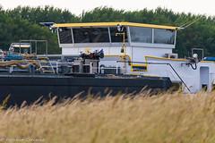 IMG_0025 (Fafakan Cercevik) Tags: canon eos 30d 55250mm 55250 mm 50 250 ship dune grass bokeh bokuh depth field tree tanker canonefs55250mmf456isstm canoneos30d