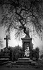 IMG_7824_web - Sorrow harmony (AlexDROP) Tags: 2011 vienna wien austria österreich canon5d ef247028l best iconic famous mustsee picturesque postcard travel graveyard tree bw statue daytime cemetery
