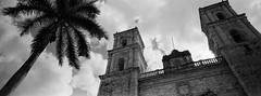 Cathedral of San Gervasio (AnniversaryRoad) Tags: 135 35mm 45mm bw cathedralofsangervasio church hasselblad kodak mayanriviera valladolid xpan yucatan analog black blackandwhite cathedral clouds film mexico outdoor outside palmtree panoramic sky tree trees white