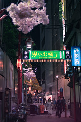 Omoide Yokocho in Shinjuku - Tokyo, Japan (inefekt69) Tags: japan tokyo night street asia city nikon d5500 日本 東京 shinjuku 新宿 neon omoideyokocho alley 思い出横丁