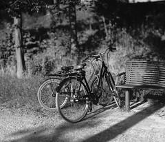 summer evening light 4 (Amselchen) Tags: bicycle mono blackandwhite bw bokeh blur dof depthoffield bokehpanorama light shadow sony alpha7 samyang 85mmf14