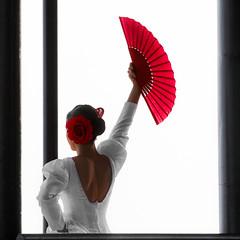Flamenco dance (hernanpba) Tags: chica mujer bailarina danza baile flamenco andalucia españa fiesta feria abanico flor peinado foto fotografia photo photography imagen image pic photographer fotografo hernanpiñera girl woman dancer dance spain fair fan flower hairstyle photograph