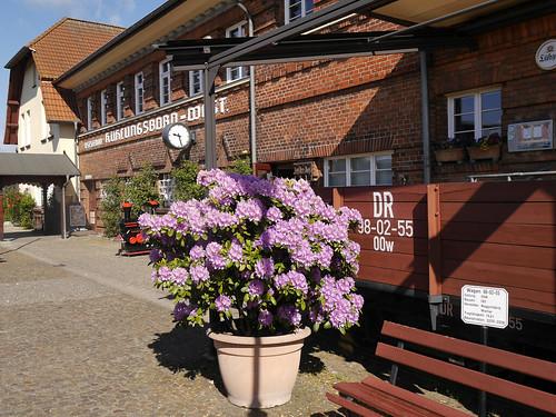 Molli Bahnhof Kuehlungsborn West