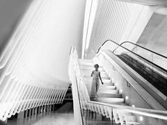 Oculus princess (marianna_a.) Tags: oculus newyork interior architecture building white blackandwhite monochrome girl stripes p1370279 mariannaarmata stairs staircase pattern lines urban