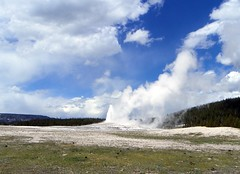 Yellowstone - Old Faithful pic3 (michaelyouhas) Tags: yellowstone national park 2017 youhas nature old faithful geyser hot springs