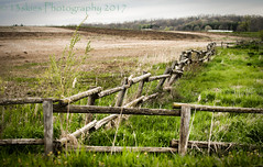 Beginning (HFF) (13skies) Tags: happyfencefriday greenfields fences intersection join hff boundary barrier farm divided space private personal fields distant woodenfence rails fencefriday sonyalpha99 singleshothdr processing
