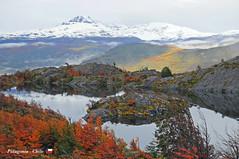 Paine Grande (YellowSingle 单黄) Tags: patagonia chile paine grande torres hiking lago grey glacier wild trek w yellowsingle nikon mountain forest