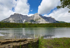 When a mirror doesn't tell the truth (Golden Ginkgo) Tags: mountains clouds sky pond nature outdoor landscape wideangle canadianrockies ripples