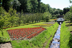 Colclough Walled Garden (Ken Meegan) Tags: colcloughwalledgarden tinternabbey saltmills cowexford ireland walledgarden stream garden flowers 1762017
