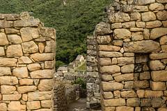 Machu Picchu -_DSC0667
