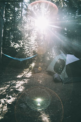 #984 (-HannahKemp) Tags: camp camping tent hammock sunlight bright morning cougarrockcampground mountrainiernationalpark forest flare sunflare