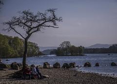 Just waiting around (jbc58) Tags: loch lomond scotland milarrochy bay balmaha