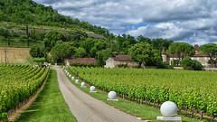 Chateau De Cayx (jo.misere) Tags: kasteel wijn chateau vin wine prins denemarken danmark ballen balls wit white clouds wolken