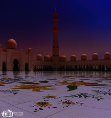 In the courtyard of the mosque - Grand Mosque Sheik Zayed - Abu Dhabi (D. Pacheu) Tags: mosque pacheu zayed sheik aboudabi abu dhabi night flowers court courtyard