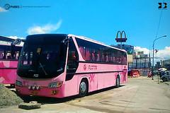 GV Florida Transport, Inc. - F23 (keso_de_bola) Tags: philbes philippine bus enthusiasts society daewoo bh116 royal luxury de12t gv florida transport f23 pilipinas hino grandeza