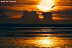 Fangyuan, Taiwan 芳苑海濱 (老莫之影 (Morris)) Tags: 芳苑鄉 彰化縣 nikon d7100 outdoor ocean sunset cloud 牛車 blue green red orange 天空 黃昏 日落 海岸 海 戶外 海邊 水 岸邊 海灘 sunshine sun