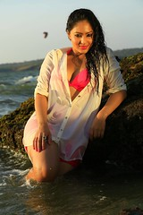 Indian Actress NIKESHA PATEL Hot Sexy Images Set-1 (71)