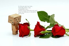danbo (art of liang) Tags: danbo flower hikey light rose quotes story romantic love