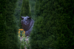 there's something in the garden (Christian Collins) Tags: canoneos5dmarkiv hog pig statue garden tree dow midland mi michigan public flower funny whimsical silly june summer