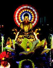 Wesak Night  8.5.17 024 (lspeng) Tags: wesaknight8517 wesak buddha triple blessed day year cockerel 2017