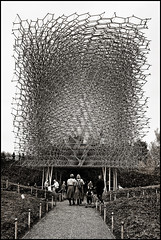 UK - London - Kew Gardens - The Hive 08_sepia_DSC4433 (Darrell Godliman) Tags: uklondonkewgardensthehive08sepiadsc4433 thehive hive wolfgangbuttress bdp stageone simmondsstudio pavilion installation kewgardens royalbotanicalgardens kew richard richmonduponthames london england britain greatbritain unitedkingdom uk gb europe contemporaryarchitecture modernarchitecture architecture building ©dgodliman darrellgodliman wwwdgphotoscouk dgphotos allrightsreserved copyright travel tourism britishisles capital city instantfave omot flickrelite travelphotography travelphotographer architecturalphotography architecturalphotographer sepia mono monochrome bw blackandwhite