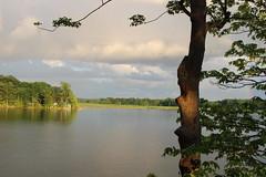 IMG_3172 (DKONOP) Tags: ny newyork stlawrenceriver northcountry alexandriabay jeffersoncounty riverrats summer water
