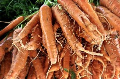 Gnarly, Hairy Carrots (Bennilover) Tags: vegetables market farmersmarket carrots carrot orange hairy gnarly weird