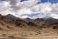 12-06-27 India-Ladakh (102) Leh R01 (Nikobo3) Tags: asia india ladakd kashmir kachemira karakorum himalayas paisajes naturaleza leh travel viajes nikon nikond200 d200 nikon247028 nikobo joségarcíacobo flickrtravelaward ngc