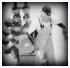 Hook (GR167) Tags: ominous filmnoir lowkey dark foreboding grain bw blackandwhite square floridakeys decisivemoment vivianmaier