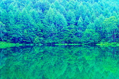 Summer Green forest and swamp (chikaraamano) Tags: green forest summer swamp mountain nature beauty quiet serene especially verse favoriteplace bestfields enjoygreen veryrestful wood water