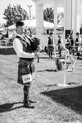 March of '79 (russwynn) Tags: competition highlandgames utahceltic scottishfestival saltlakecity bagger bagpipes