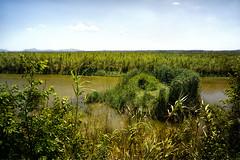 Viewpoint Hochplattform Albufera (Pe Wi) Tags: viewpoint albufera herrlicherausblick hitze rundweg naturpark outdoor mallorca