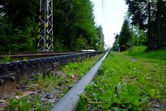 DSCF6168 (Miroslav Pivovarsky) Tags: vysoke tatry slovak slovakia natur nature outdoor fujifilm x70 mountains hiking hikings strbske pleso tarn cog railway sun day sunday
