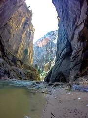 Narrows (Mister Canoehead) Tags: zion narrows hiking canyon river