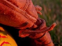 Broken (SteveFromOhio) Tags: macromonday broken baseball softball glove leather laces webbing stiches macro goldenhour summer outside yard catch kids littleleague lessons fatherhood