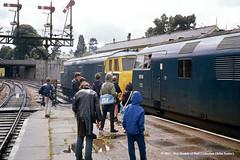 c.1970 - Newton Abbot, Devon. (53A Models) Tags: britishrail beyerpeacock hymek class35 bb d7000 class42 warship 816 eclipse dieselhydraulic passenger devon train railway locomotive railroad newtonabbot