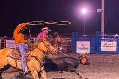 DSC_4296-Edit (alan.forshee) Tags: rodeo horse cow ride fall buck spin twirl bull stallion boy girl barrel rope lariat mud dirt hat sombrero